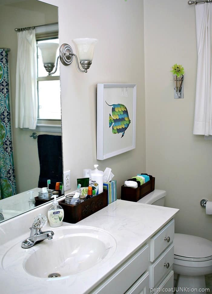Decorating the master bathroom home decor