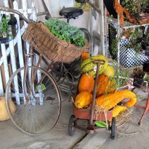 fall-colors-nashville-flea-market.jpg