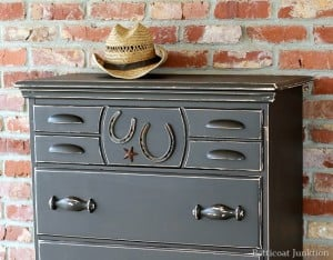 furniture-theme-cowboy-chest-with-horseshoe-detail-petticoat-junktion.jpg