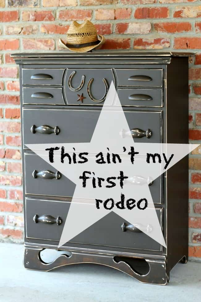 this ain't my first rodeo cowboy themed furniture
