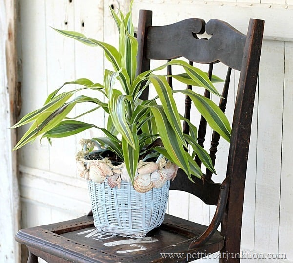 plant basket decorated with seashells Petticoat Junktion DIY