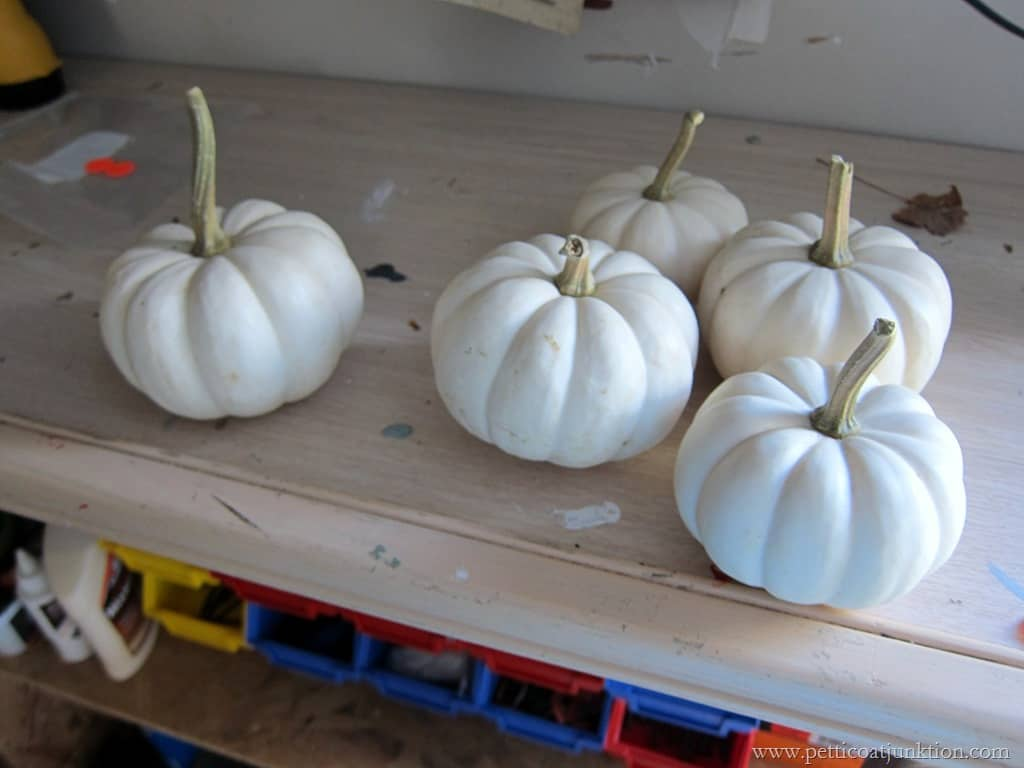 Decorating White Pumpkins For Holiday And Fall Displays