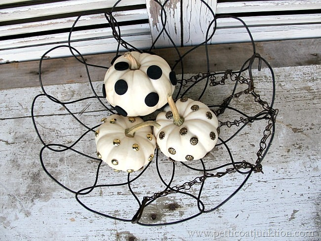 small white pumpkins with dots Petticoat Junktion