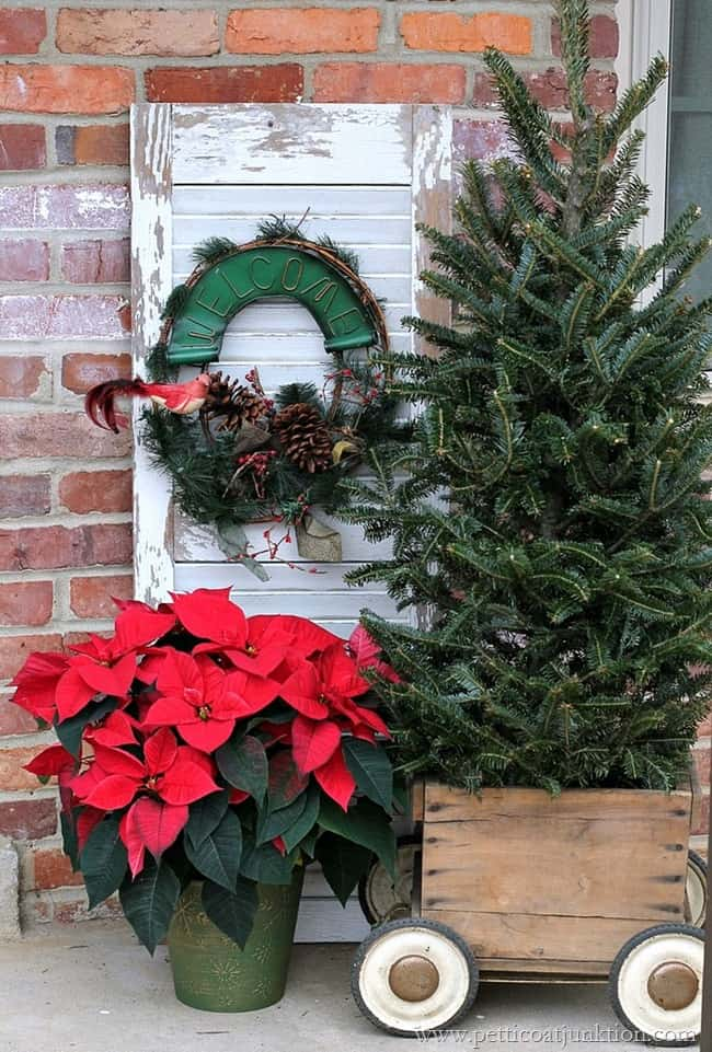 Poinsettia-Fir-Tree-And -Vintage Christmas Decor Petticoat Junktion