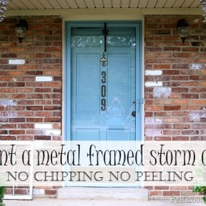 painted-metal-framed-storm-door-Petticoat-Junktion-no-chipping-no-peeling.jpg