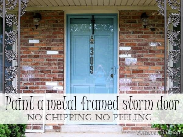 Beautiful Painted Metal Framed Storm Door Petticoat Junktion No Chipping No Peeling