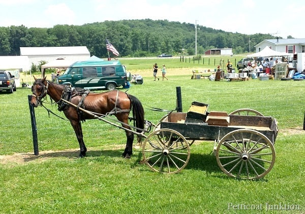 Horse and Wagon in Kentucky Petticoat Junktion 400 mile yard sale
