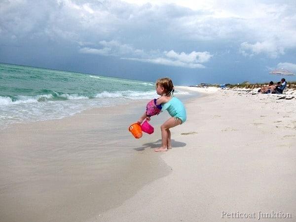 Sofi at the beach