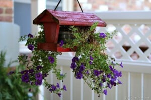 DIY-hanging-flower-planter-not-for-the-birds-Petticoat-Junktion.jpg
