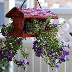 DIY-hanging-flower-planter-not-for-the-birds-Petticoat-Junktion.jpg