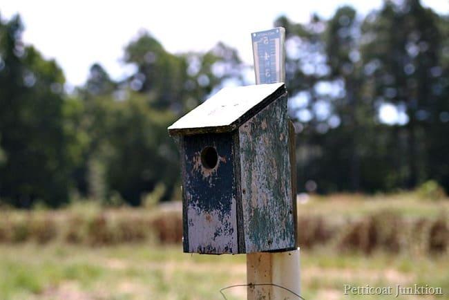 dad's handmade homemade birdhouses Petticoat Junktion
