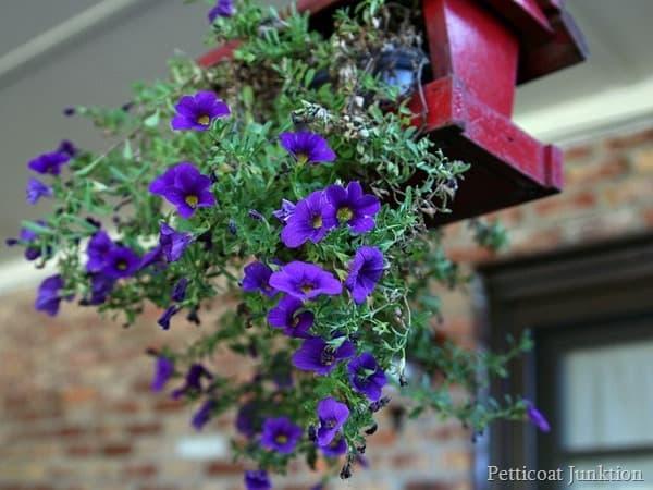 diy hanging flower planter Petticoat Junktion diy project