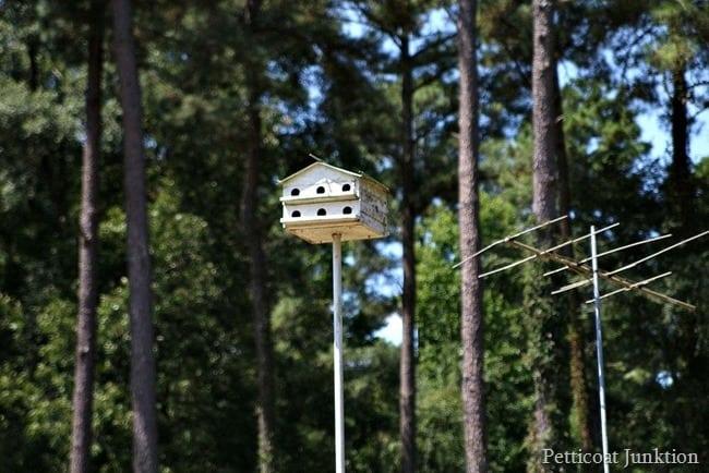 large birdhouse Petticoat Junktion