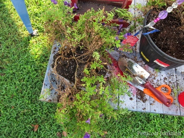 turn a bird feeder into hanging flower planter Petticoat Junktion