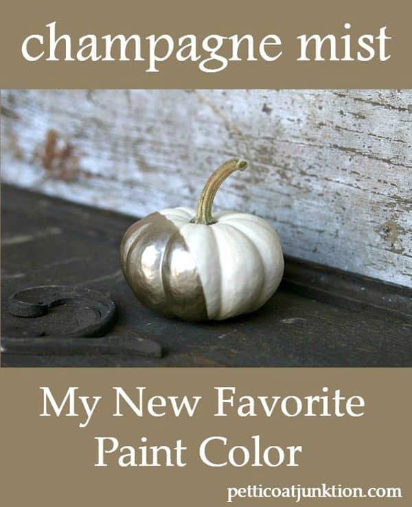Rustoleum Champagne Mist Paint Color Petticoat Junktion project 1