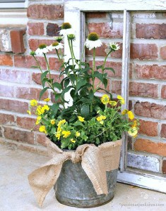 well-loved-bucket-makes-a-cool-flower-pot-Petticoat-Junktion-diy-2.jpg