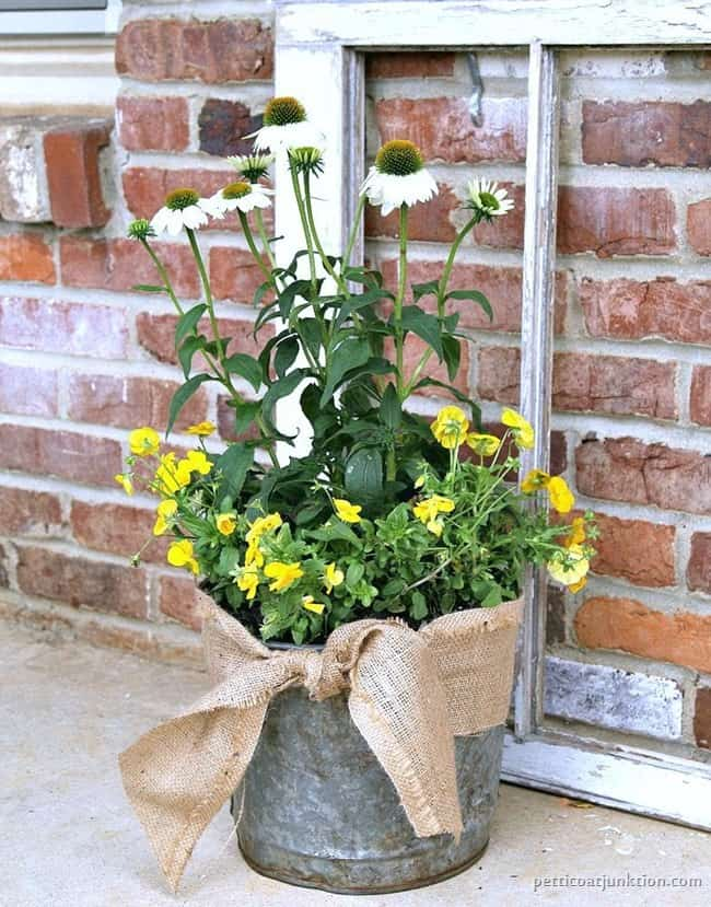well loved bucket makes a cool flower pot Petticoat Junktion diy 2