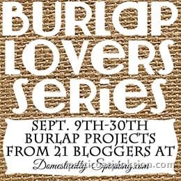 Burlap Series Image