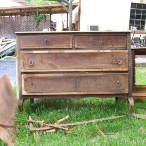 My Latest Fixer Upper Junk Finds