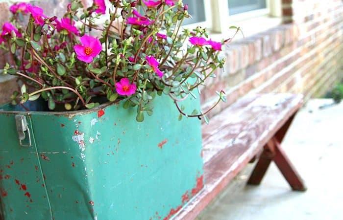 Fun-Junky-Finds-Make-Great-Flower-Planters-Petticoat-Junktion.jpg