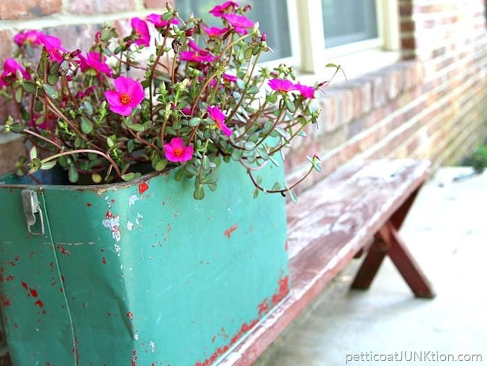 Fun Junky Finds Make Great Flower Planters Petticoat Junktion