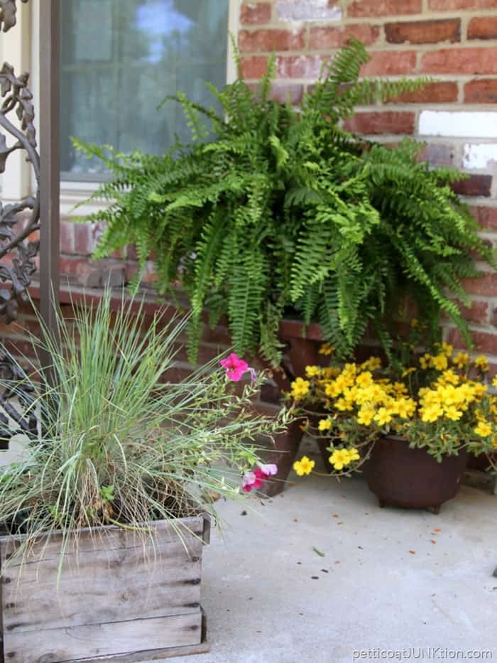 Fun flower planter and containers