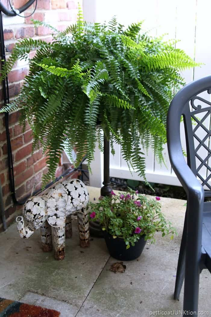 wrought iron fern stand