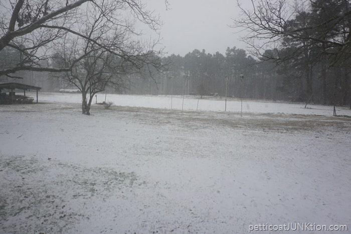 Arkansas January 2017 on the farm