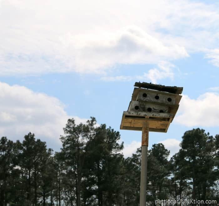 Arkansas Story bird house