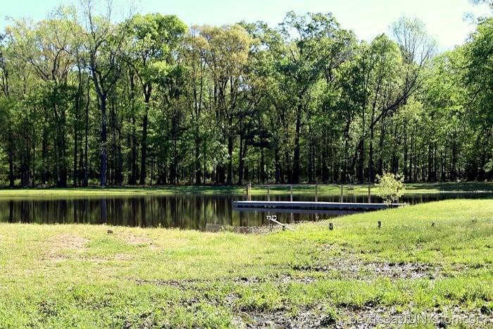 pond on the farm