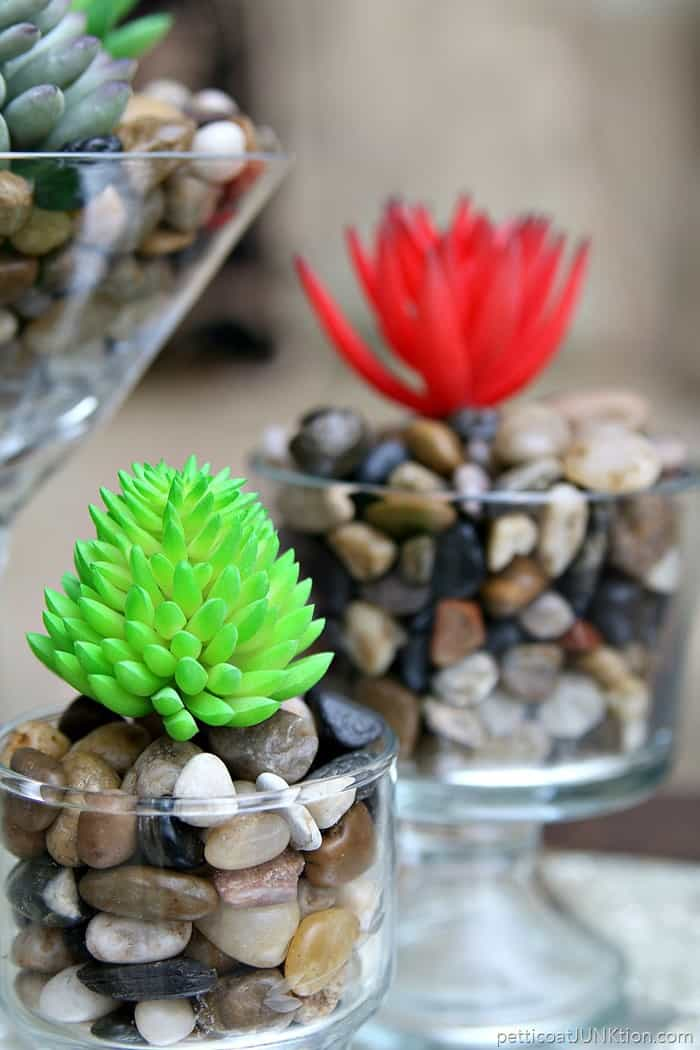 pretty succulents in river stones and thrift store glasses