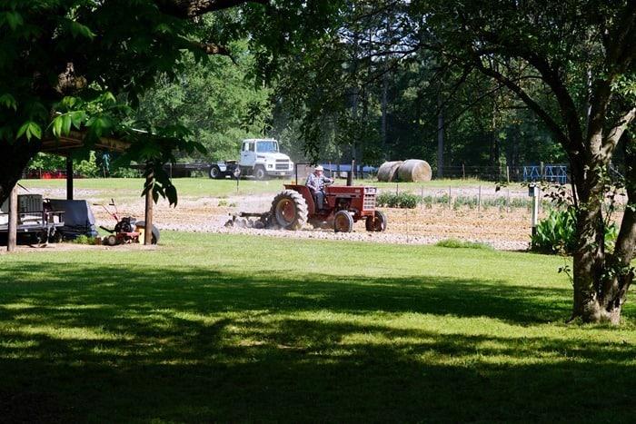 dad plowing the garden