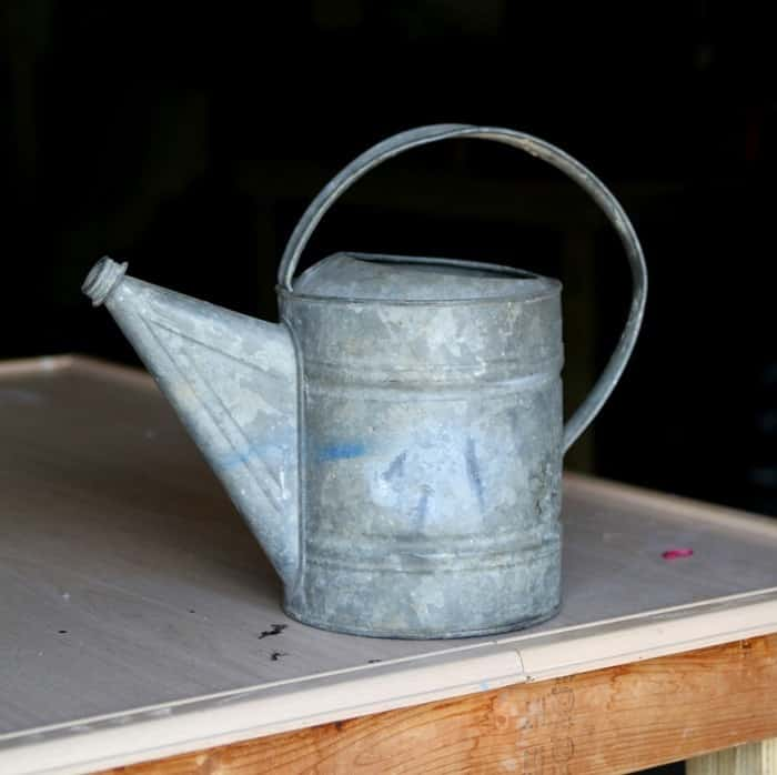 junky galvanized tin watering can