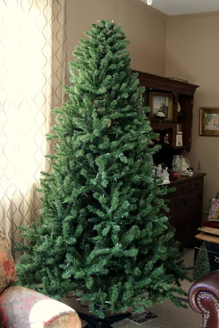 tree no decorations