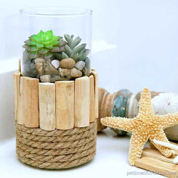 Nautical Style Succulent Plant Display