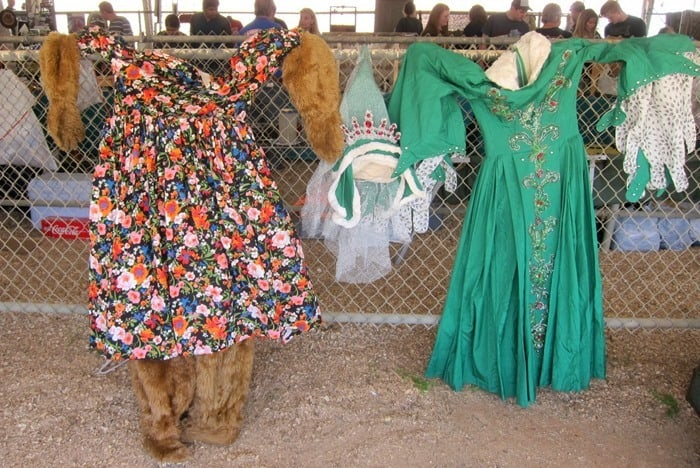 Cactus To Funky Costumes & Much More At The Flea Market