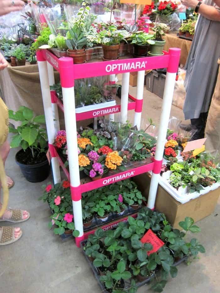 summer flowers at the Nashville Flea Market