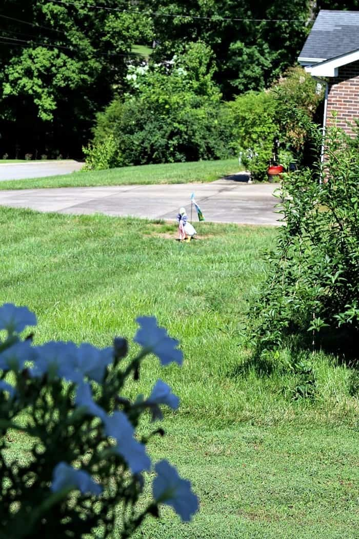 Ms Evelyn's Lawn Goose Ornament