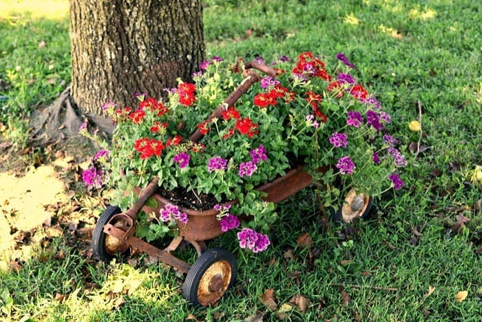 Rusty Wagon Flower Planter And Other Junky Things Found On Our Lawn