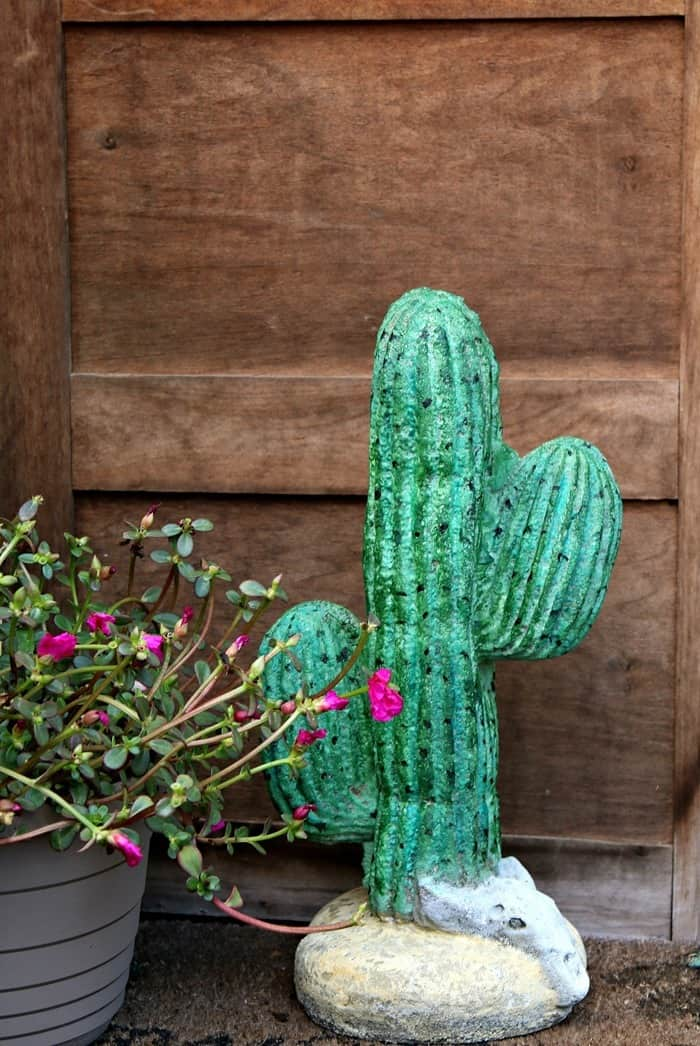 Surprising Concrete Cactus Makeover Using Watercolors