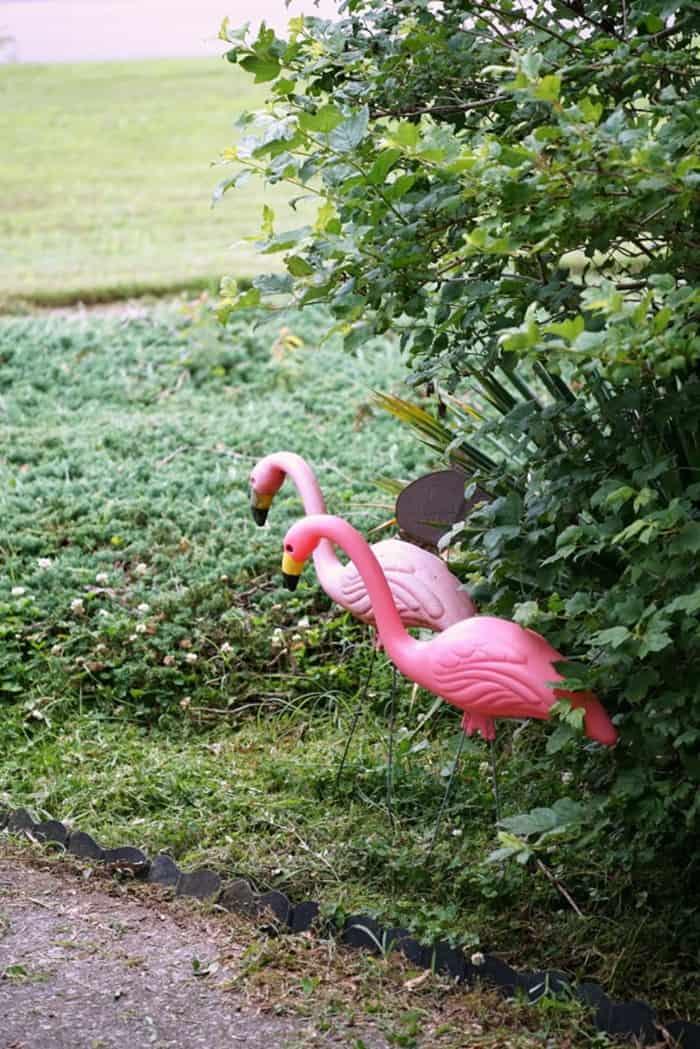 plastic pink flamingo lawn ornaments