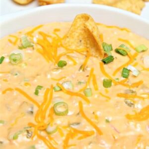 5-Ingredient-Cheesy-Green-Chile-Ham-Dip_thumb (3)