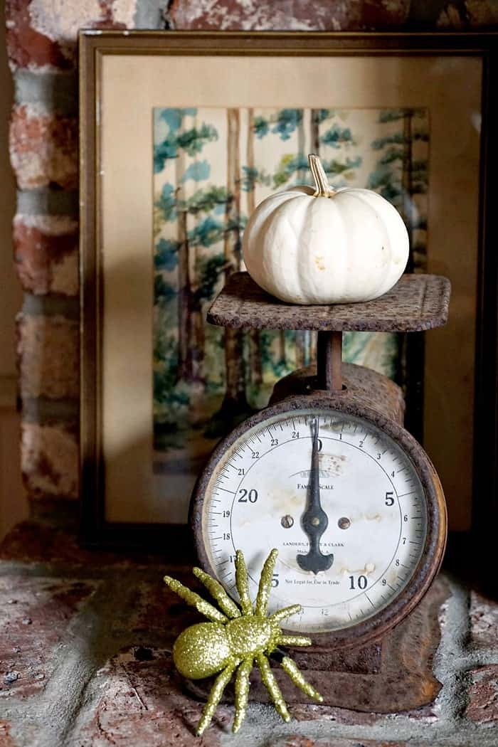 rusty vintage kitchen scale for home decor
