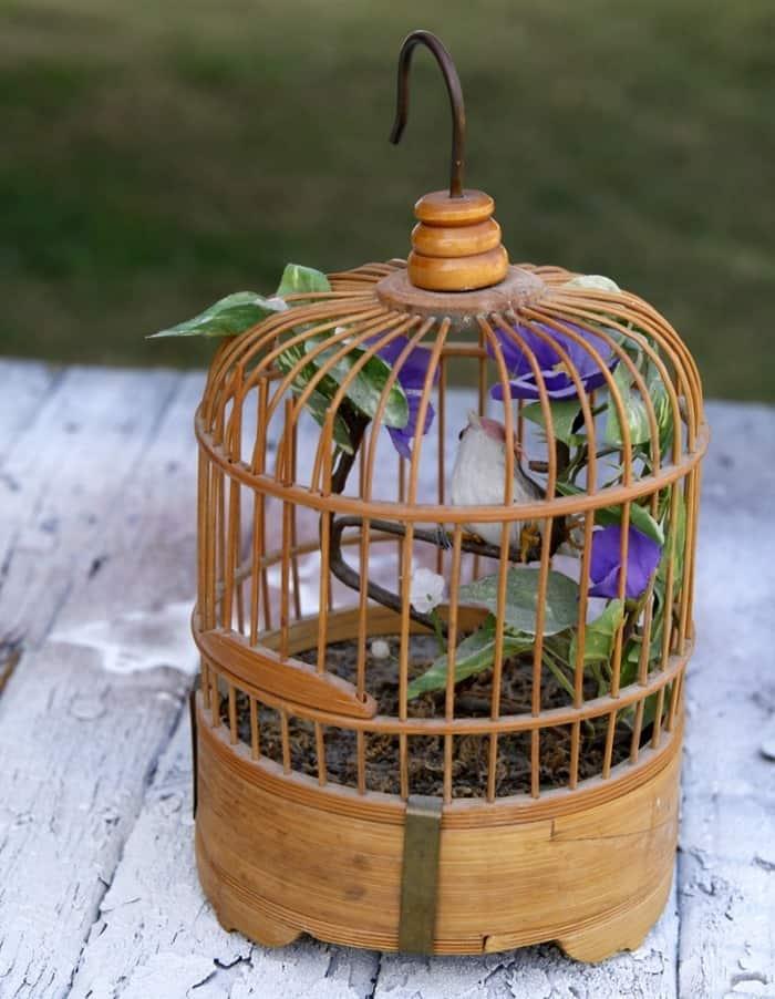 thrift store bird cage