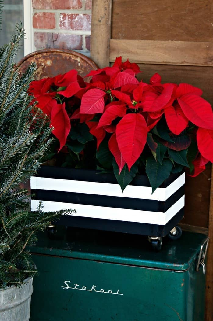 paint a wood box with black and white stripes and add a plant