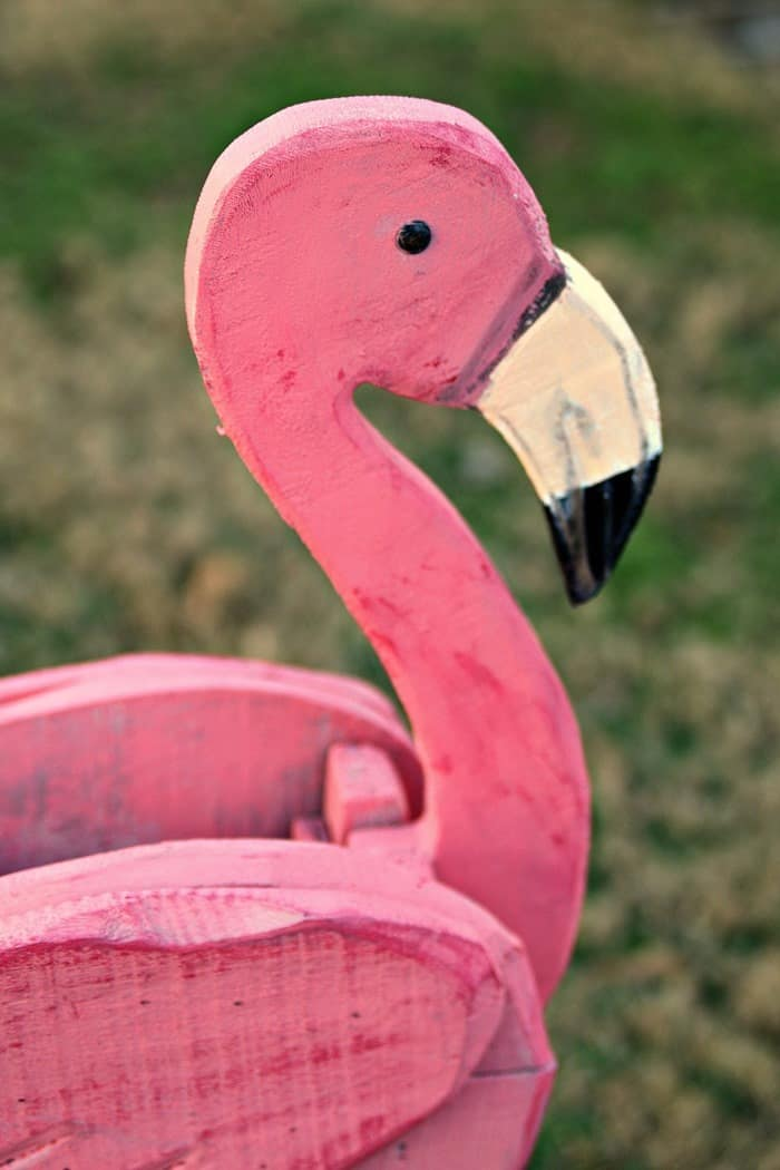 How about a coral color pink flamingo