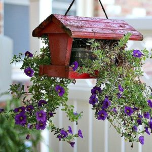 15 Unique Outdoor Plant Containers