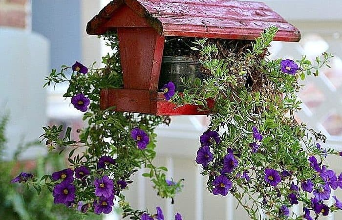 15 Unique Outdoor Plant Containers