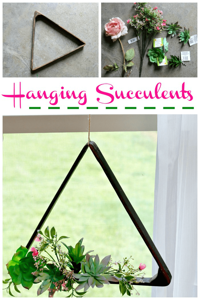 Hanging succulent plant decor idea