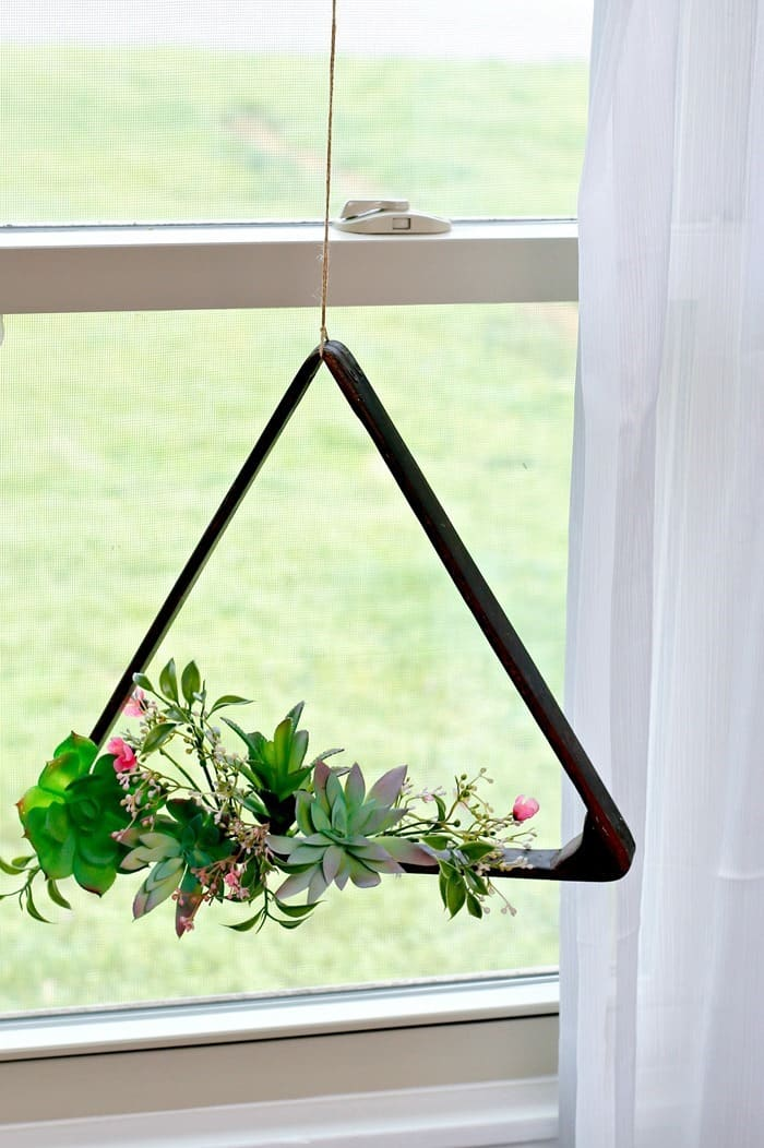 Indoor Succulent Plant Hanging Display Idea